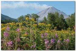 Фотография вулкана Кизимен на Камчатке