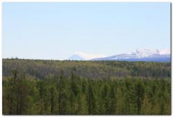 Вулкан Кизимен на Камчатке