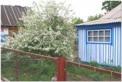 Село Лазо в Камчатском крае