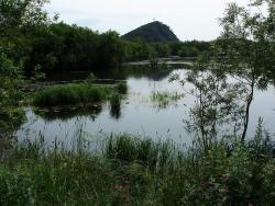 P8120026 Болото на Култучном озере.jpg