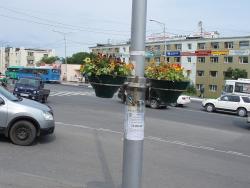 Вазоны на столбе на проспекте 50 лет Октября.jpg
