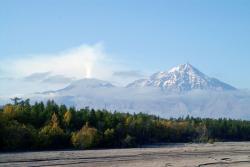 Извергается левый конус вулкана Шивелуч