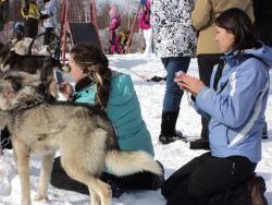71.Туристы возле ездовых собак в Мэнэдеке.jpg