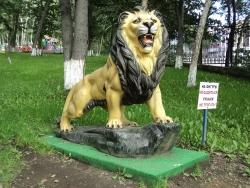 Лев в городе Петропавловске-Камчатском